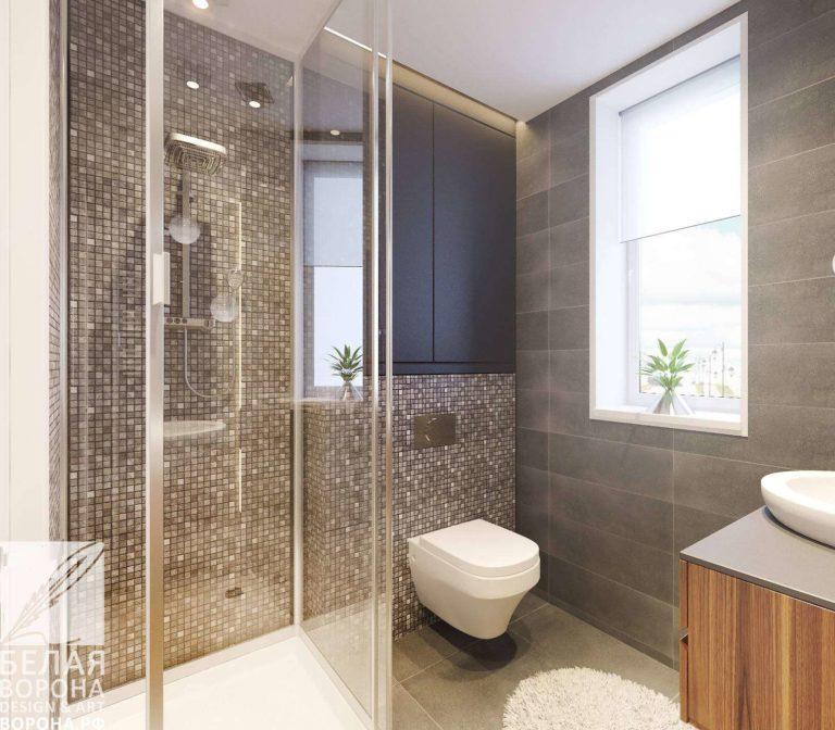 Совмещение санузла с ванной в современных дизайн-проектах
